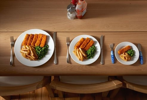 different portions of meals